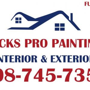 Nick Pro Painting