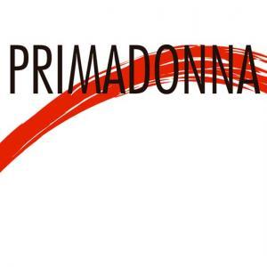 Primadonna D&D Hair Stylist