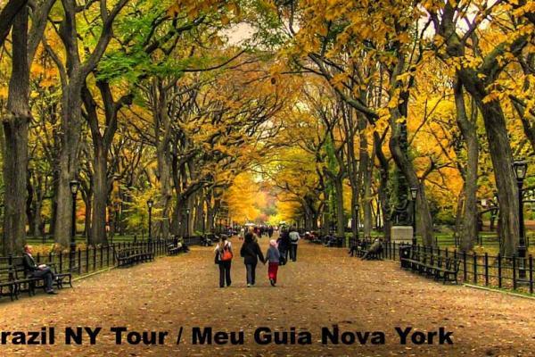 Brazil NY Tours